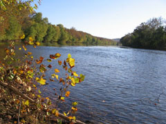The cabin is within a quarter mile easy walk to the Shenandoah River. The cabin's lot is bordered on two sides by Rolling Ridge Foundation land.